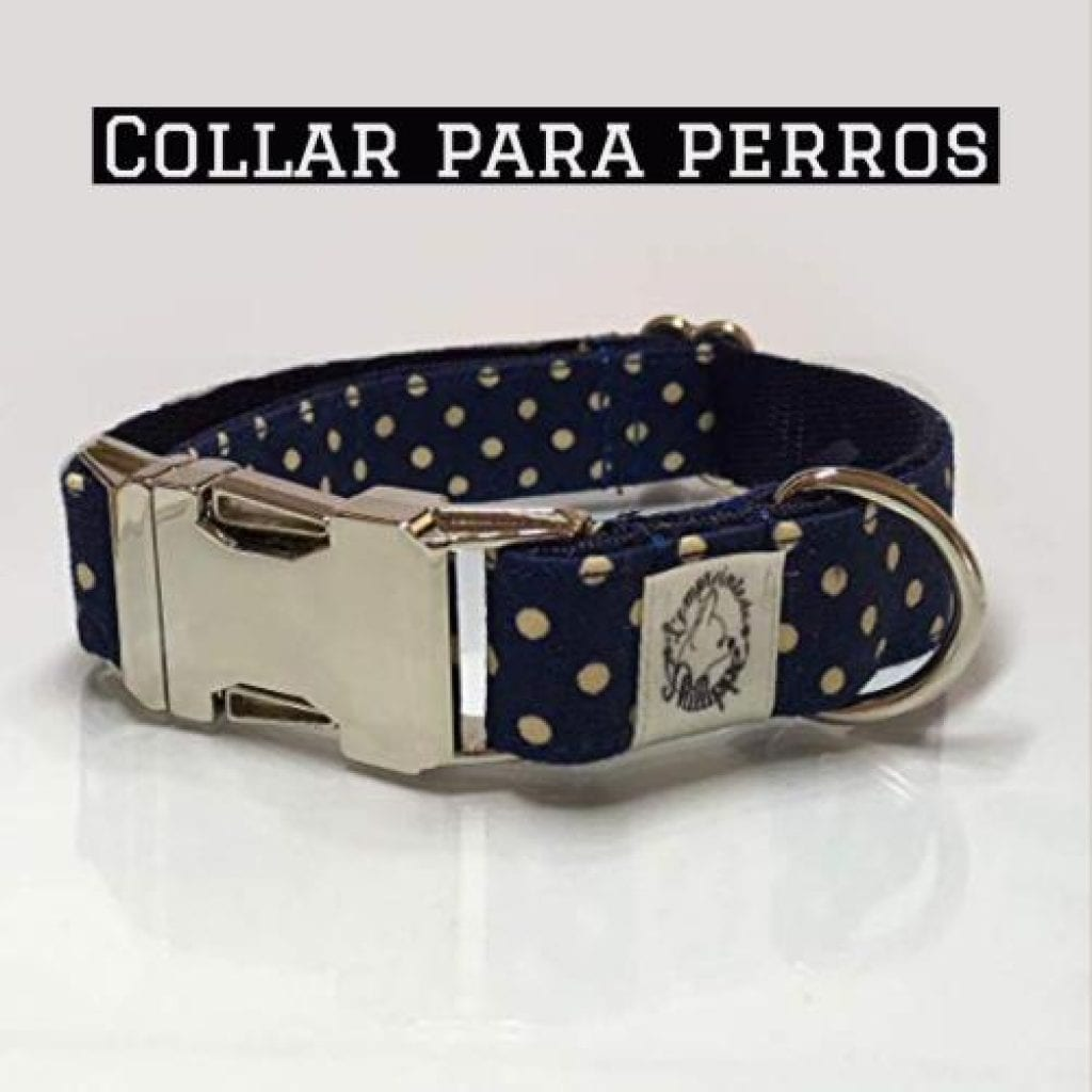 collar para perros points