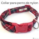 Collar para perro de nylon