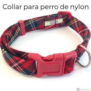 Collares para perros de nylon