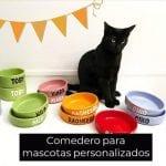 Comedero para mascotas personalizados