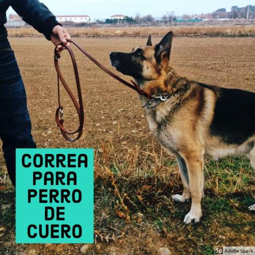 Correa para perro de cuero de tres posiciones