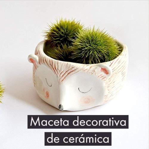maceta decorativa de cerámica